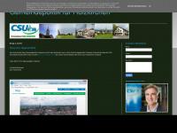 csuholzkirchen.blogspot.com