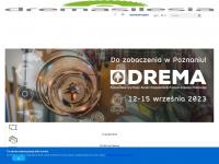 dremasilesia.pl