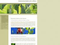 lapalma-botanik.info