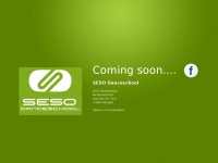 seso-danceschool.de