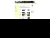 jv-delitzsch.de