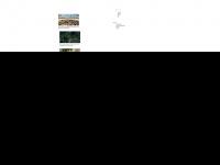 swp-berlin.org