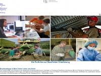 Berufswahlpass - Sachsen  /  Berufsorientierung