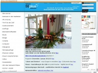 netzwerk55plus.de |