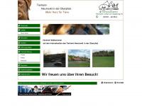 Tierheim-neumarkt.de - Startseite