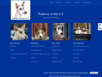 podenco-in-not.de
