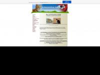 vermittlung-katzenparadies.de.tl