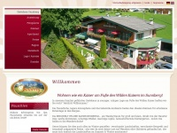 Startseite - Pension Sunnberg - Going am Wilder Kaiser