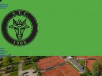 schweriner-tennisclub.de