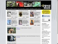 animal-stars.de