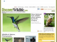 discoverwildlife.com