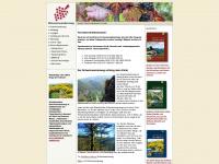 ahr-rotweinwanderweg.de Thumbnail