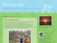 wunderwelt-studydevil.blogspot.com