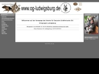 sv-og-ludwigsburg.de