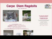 Ragdoll Website - Ragdolls of Carpe Diem - Homepage der Carpe Diem Ragdolls - Ragdoll Babies - Ragdoll Kittens - Ragdoll Cats - Ragdoll Katzen