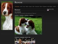 redmore.at