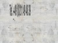 die-mausdirektion.de