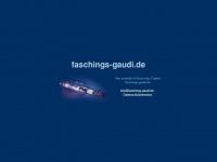faschings-gaudi.de