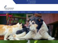 Dr-brieger.de - Dr. Brieger Praxis für Hunde, Katzen und kleine Heimtiere - Tierarzt  in Berlin - Zehlendorf