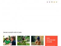 Schmidti's deutsche Psion-Seiten