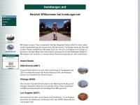 Willkommen bei homburger.net