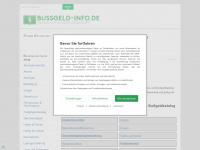 bussgeld-info.de