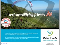 flying-friends news