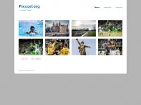Pixxxel.org | …einfach Fotos