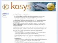 kosys-group.com