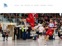 HC Glauchau/Meerane: Mannschaften