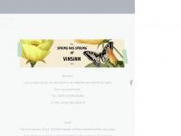 vinsinn.com