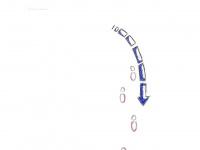 ppauge.de