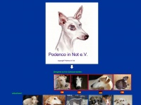 podenco-in-not.com