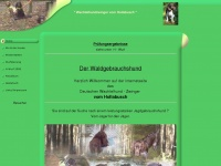 wachtelhund-vomhollabusch.de