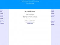 tsfschoeneberg.de