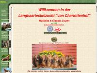 """Langhaarteckelzucht """"von Charlottenhof"""""""