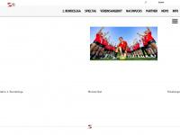 Werkselfen - TSV Bayer 04, Handball, Handball Leverkusen