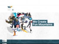 youngmountain.com