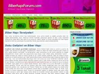 biberhapiforum.com
