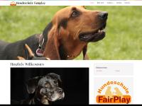 hundeschule-fairplay.com