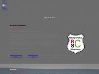 RSC Hildesheim - News