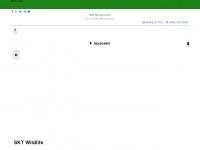 wildwasserschule.com