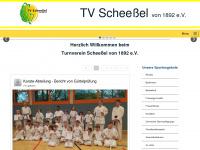 tv-scheessel.de