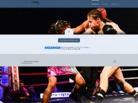 raja-amasheh.net