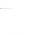 din-flyer.de