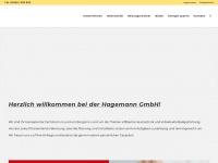 hagemann-burgsinn.de