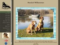 kipanga.de Webseite Vorschau