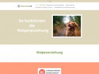 welpenerziehung24.net