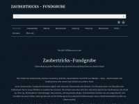 zaubertricks-fundgrube.de