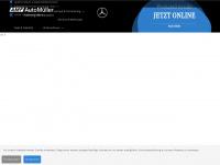 amf-fn.de Webseite Vorschau